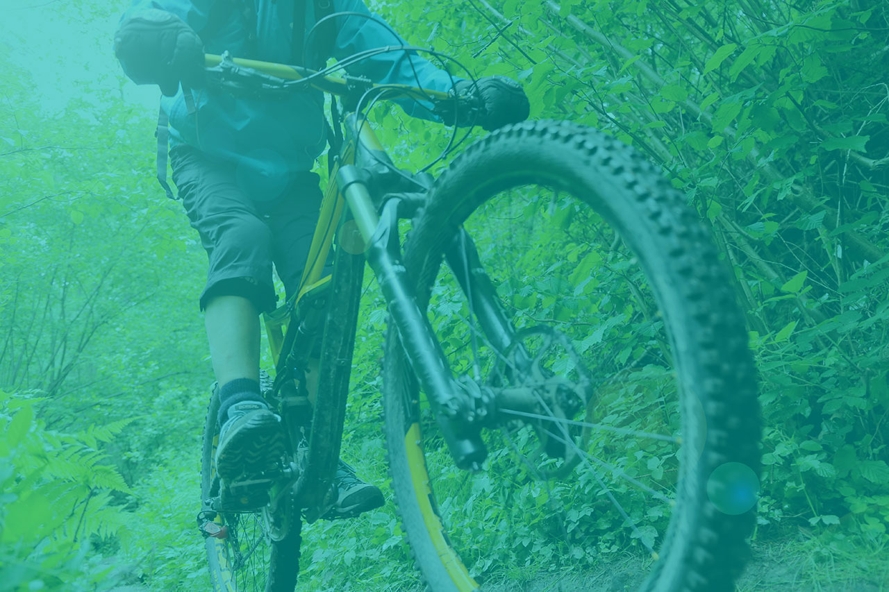 Ain Sport Santé : bandeau filigrane vert